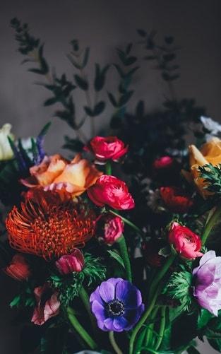 Ảnh Hoa | Share Bộ Ảnh Hoa Cỏ Cực Đẹp Cho Các Bạn Yêu Hoa