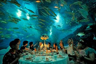 "Restaurant ""Ithaca"" Maldives"