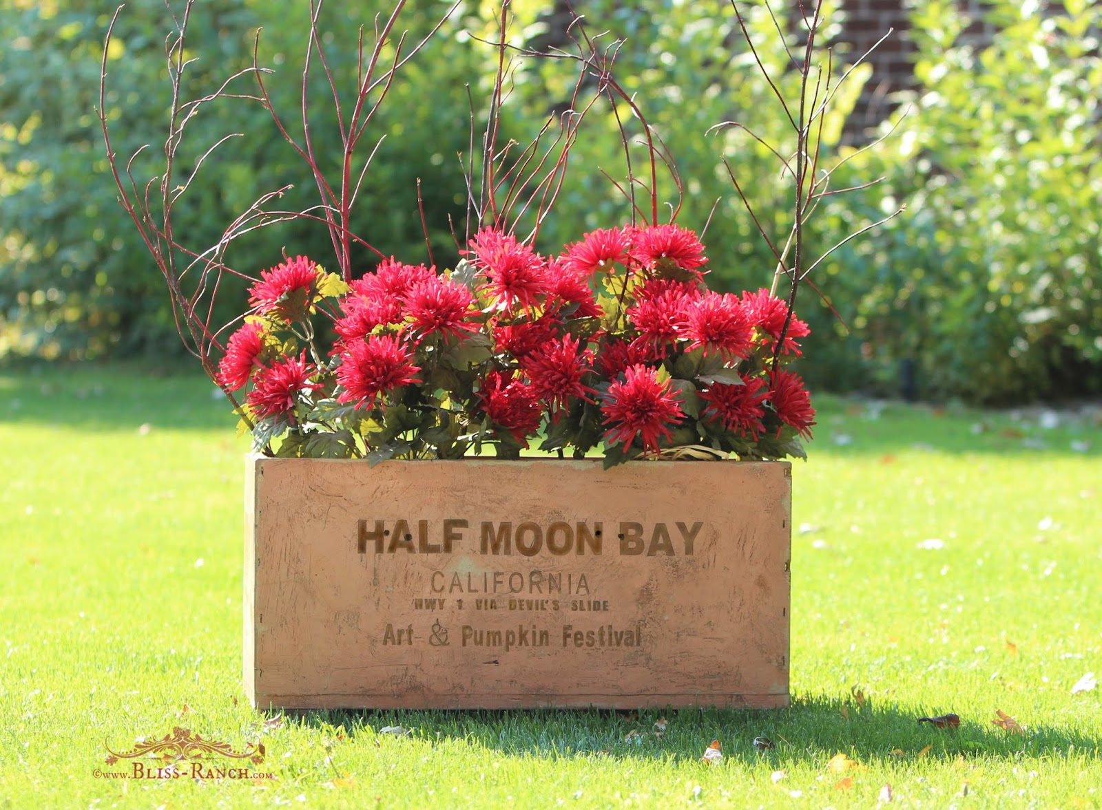 Half Moon Bay California Box Maison Blanche Paint Bliss-Ranch.com