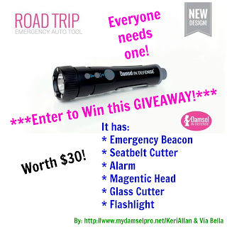 giveaway, Damsel in Defense, Emergency Auto Tool, Scouting, Protecting Family