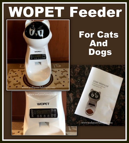 WOPET Pet Feeder Product Review | Posh Pooch Designs
