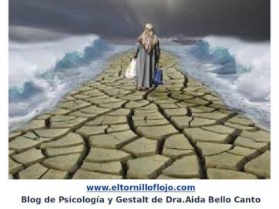 Aida Bello Canto, Psicologia, Emociones, Gestalt