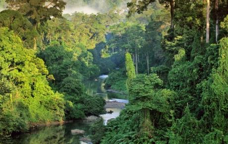 Borneo, East Malaysia