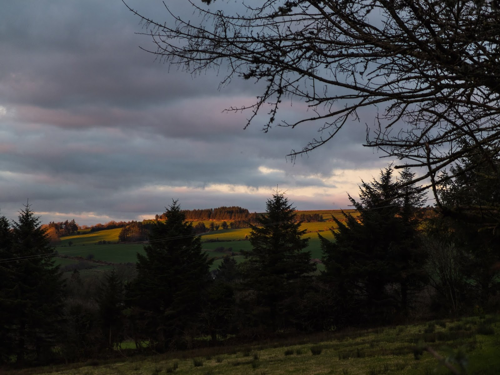 Sun setting on mountain top forests from a field in North Cork.
