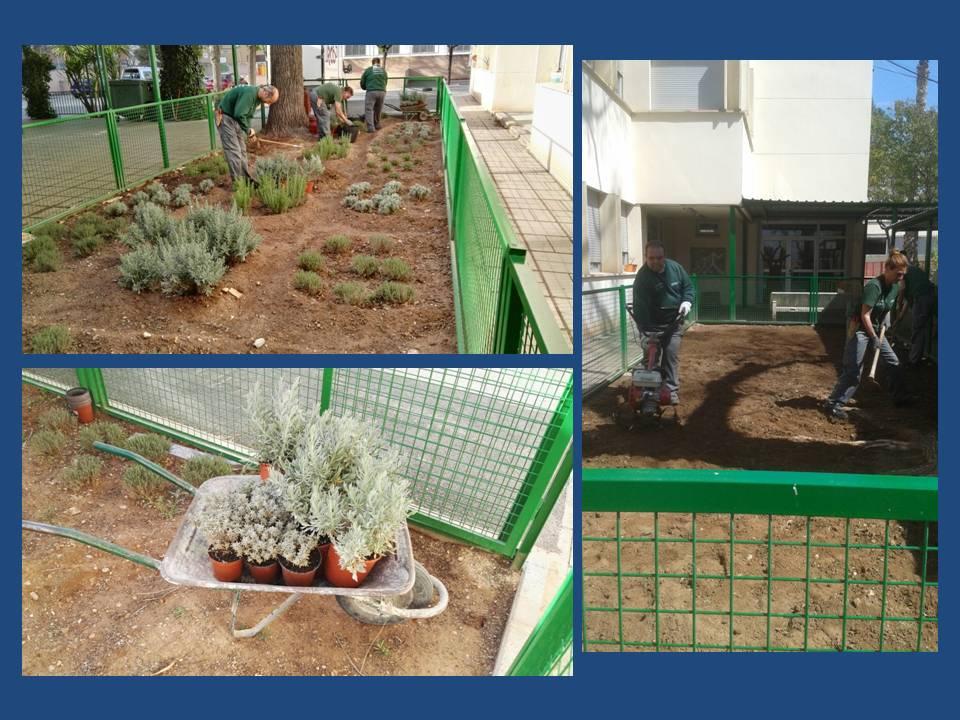 Taller de empleo Desarrollo Local II Aldaia: Jardinera CEIP Ausias March