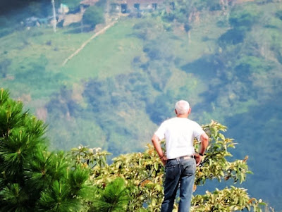 disfrutar de la vista agradable que tiene la naturaleza en sus montañas