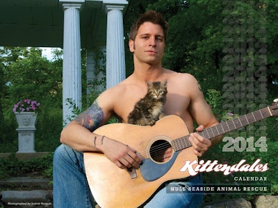 2014 Kittendales calendar, for Hull Seaside Animal Rescue