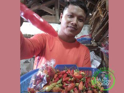 Cabe Rawit Mulai Bersahabat di Pasar Pabuaran, Kab. Subang