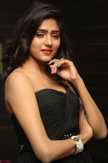 Shalu Chourasiya in spicy Sleeveless Strapless Black Top at O Pilla Nee Valla Movie Audio Launch Feb 2017 124.JPG
