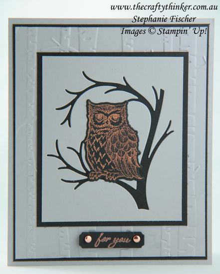 #thecraftythinker  #stampinup  #stillnight  #owl  #masculinecard  #rubberstamping , Still Night Bundle, Shimmer Paint, Woodland Embossing Folder, Stampin' Up Australia Demonstrator, Stephanie Fischer, Sydney NSW