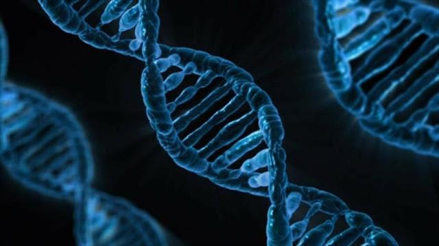 Científicos buscan tratar cáncer editando el genoma humano