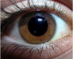 حجم بؤبؤ العين