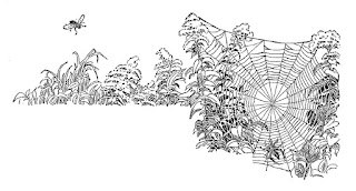 border corner spider web illustration digital design