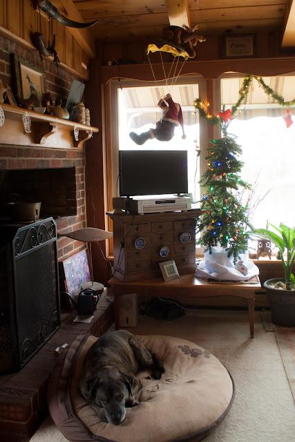 Christmas 2016 via foobella.blogspot.com