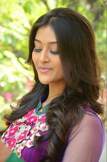 Actress Pooja Jhaveri Latest Stills in Purple Salwar Kameezt at Dwaraka Success Meet  0020.JPG
