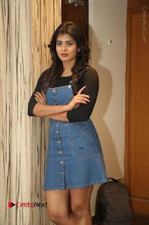Actress Hebah Patel Stills at Nanna Nenu Naa Boyfriends Movie Interview  0023.JPG