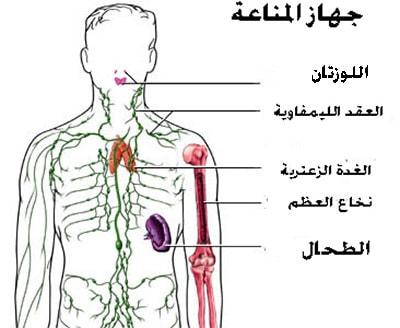 الأمراض التي تصيب جهاز المناعة