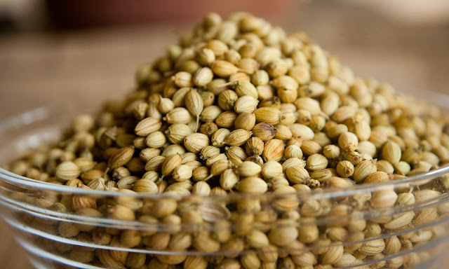 Medical advantages of coriander - rictasblog