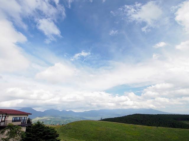 ビーナスライン富士見台展望台 ニッコウキスゲ