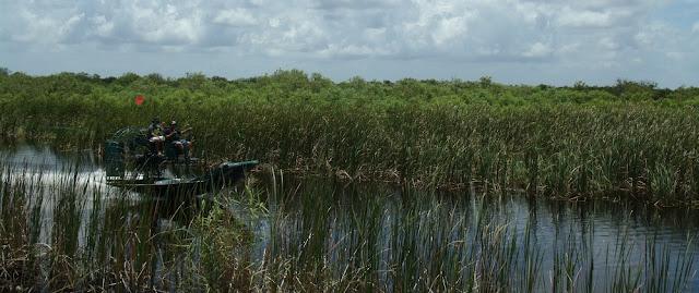 Airboats en los Everglades