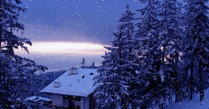 Beautiful Snowfall Real Snowfall Hd Desktop Wallpapers