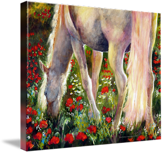 White Horse in poppy Field Painting