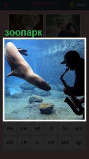 сделан зоопарк под водой где играет саксофонист на инструменте