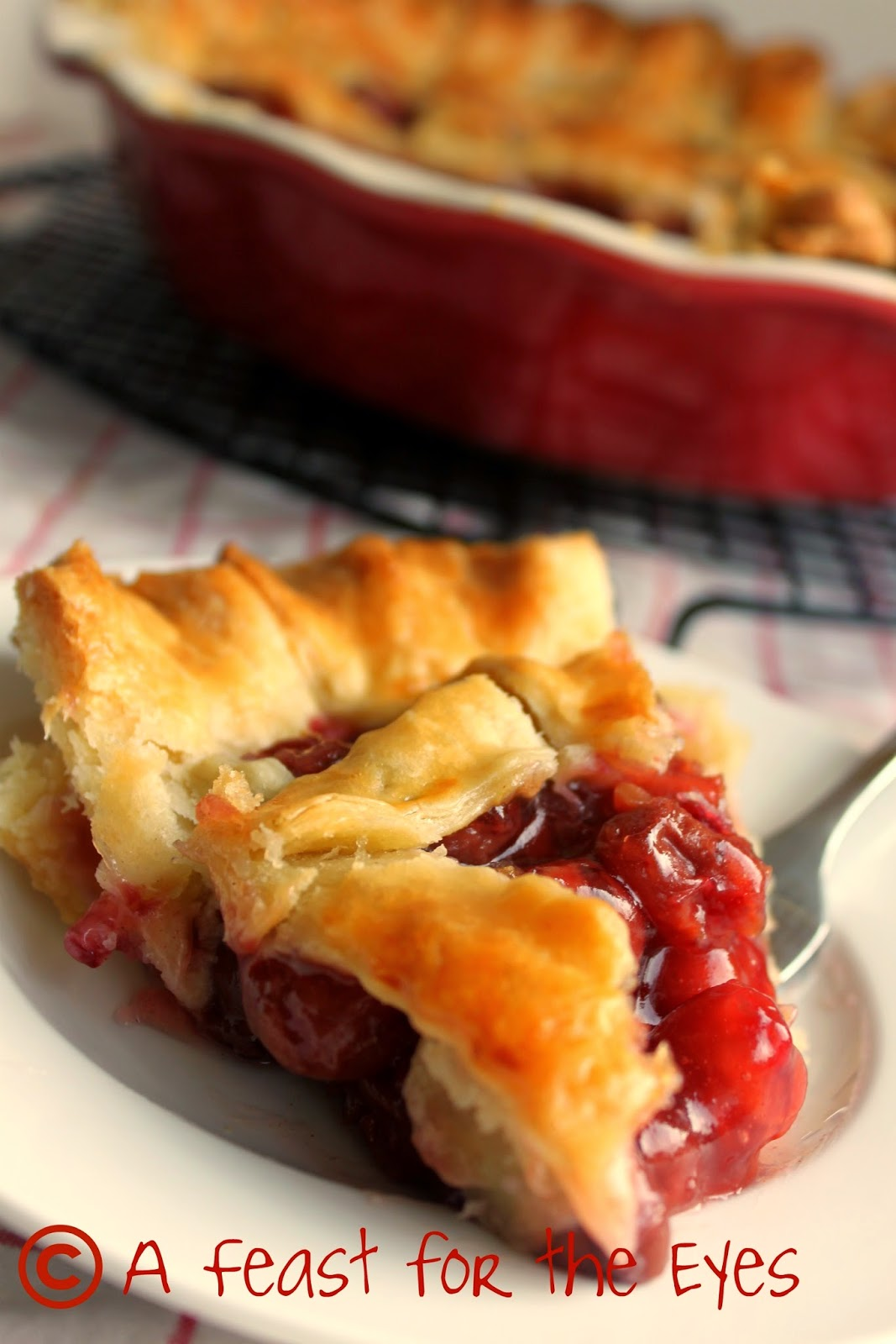 A Feast for the Eyes: Incredible Cherry Pie!