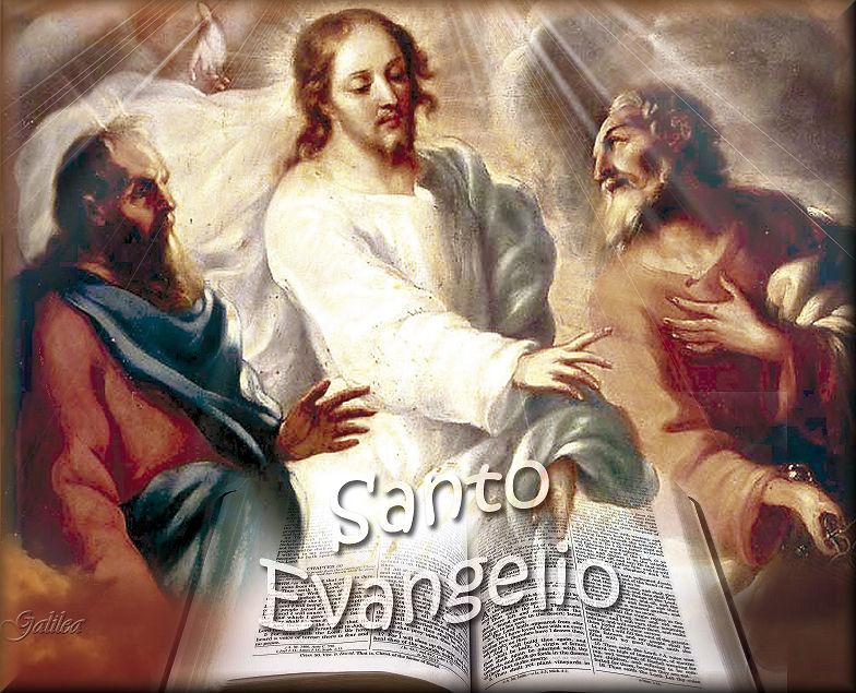 Santa María Madre De Dios Y Madre Nuestra Santo Evangelio 23 De Febrero 2019