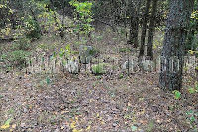 Отесанные камни в лесу