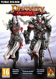 Divinity Original Sin - PC (Download Completo)