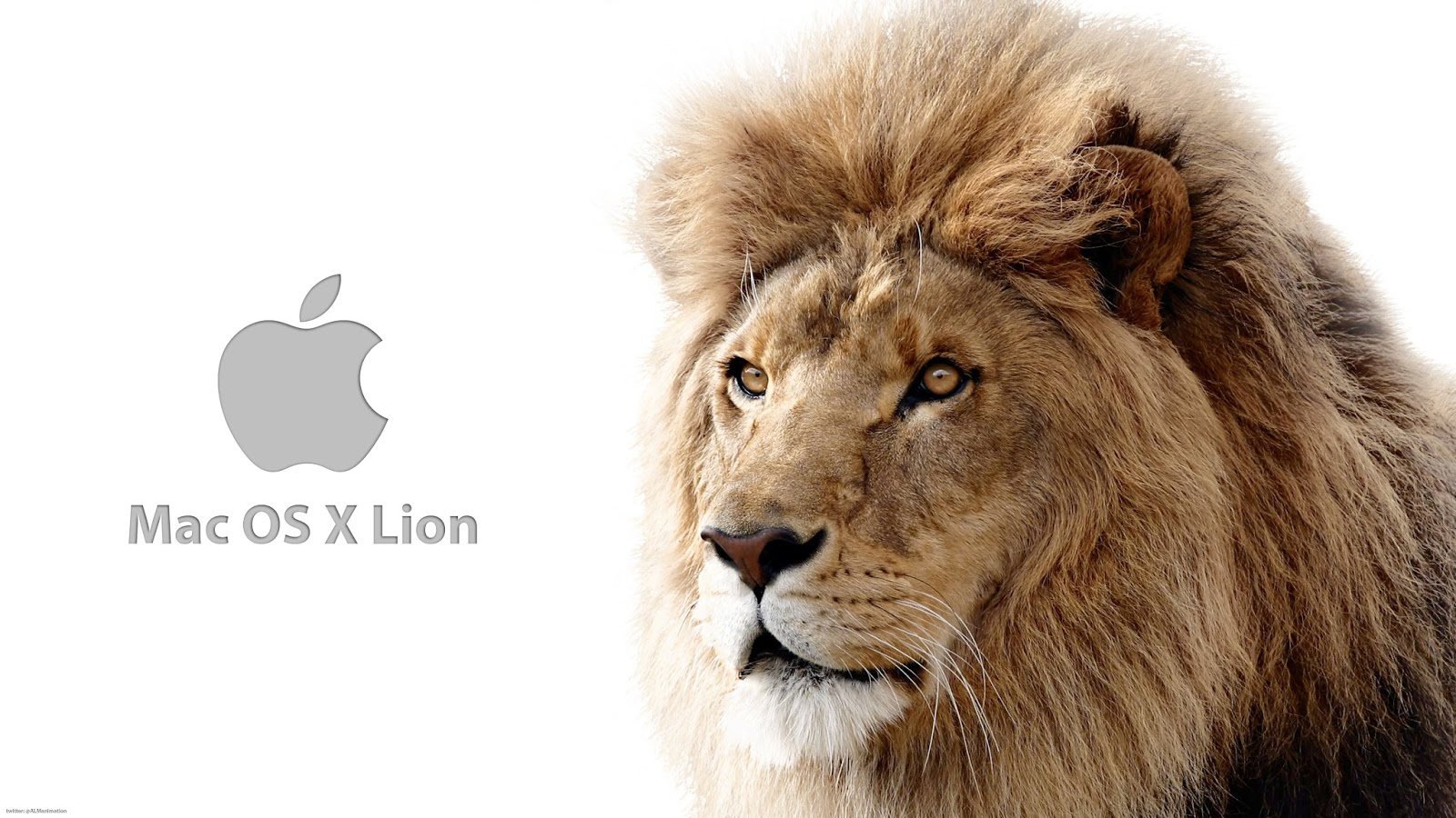Download os x lion free | os x lion 10 7 DMG free download - Siti Rohmah