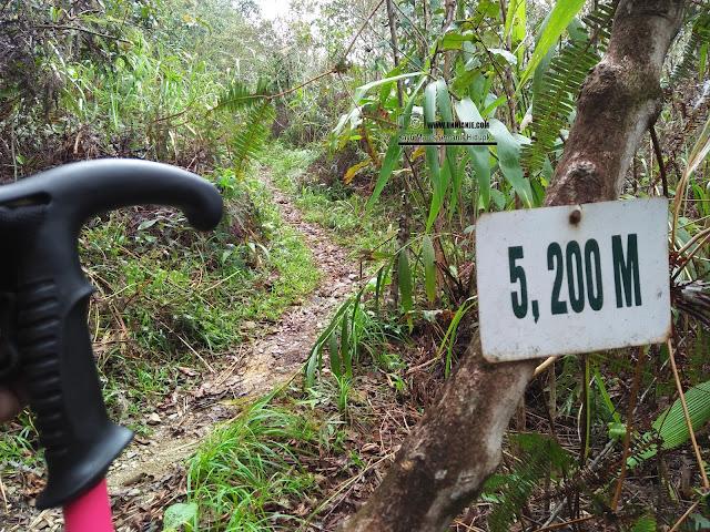 Pengalaman Mendaki Gunung Trus Madi Via Sinua Part 1