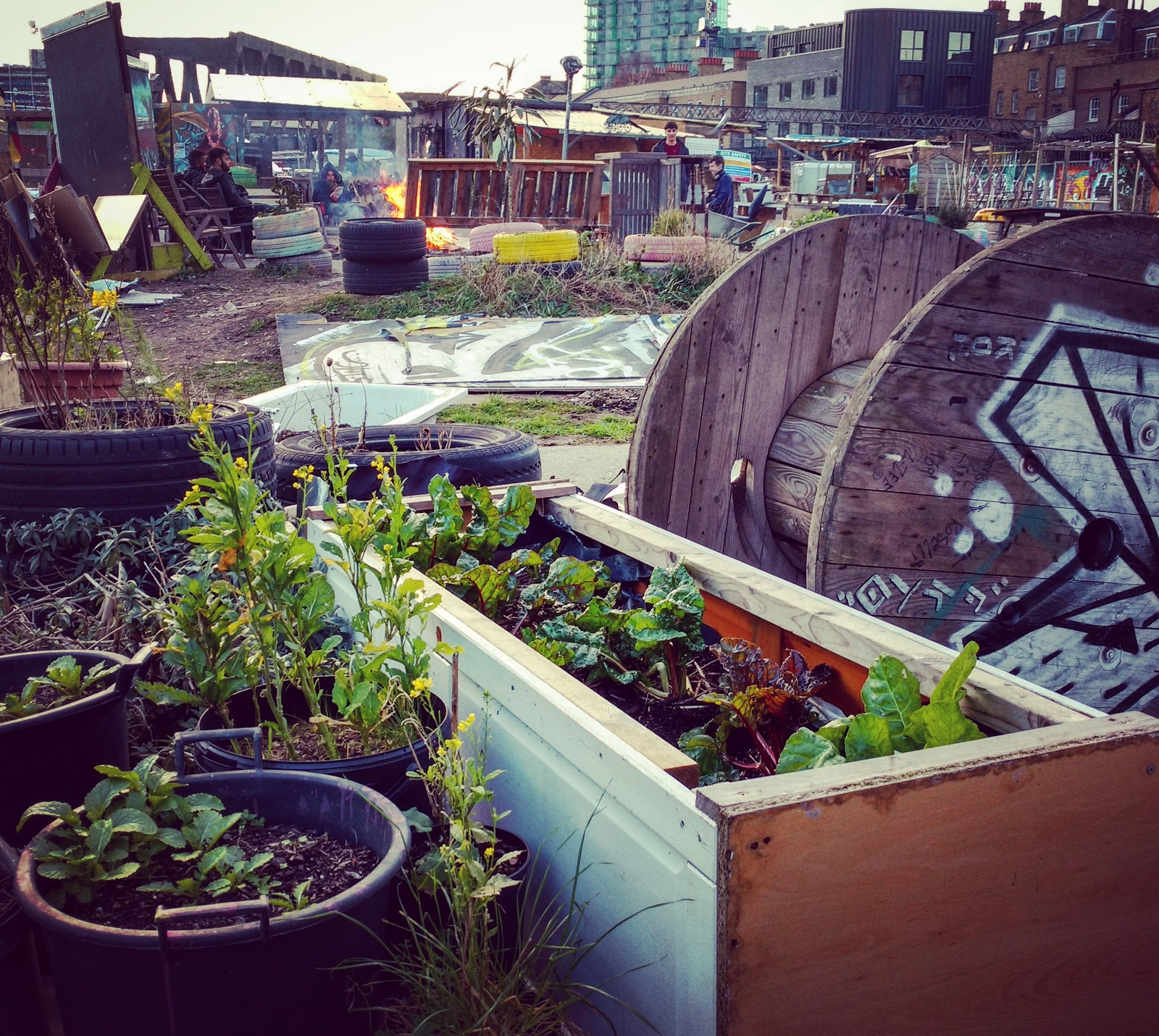 On The Road with the ROVING CAFE & the Nomadic Community Gardens