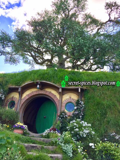 Awesome Hobbiton Movie Set Tour in New Zealand