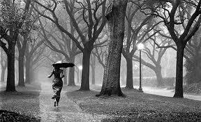Asalah belatimu setajam mungkin sayang Telah siap aku dengan segala makian Teriaki saja aku munafik Umpat aku sebagai pengcut  Telah kukatakan berulang Tiada apapun yang kan kau dapatkan Aku hanyalah pecundang Yang ketakutan saat memandang  Hujat dan cacilah Ludahi saja aku Dan berlalulah Biarku mati atau berlari  Karya: Rona Jingga Langit    BIARKAN AKU PERGI