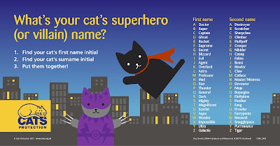 http://www.cats.org.uk/uploads/documents/COM_2479_SuperheroNameGen_Face_FINAL.jpg