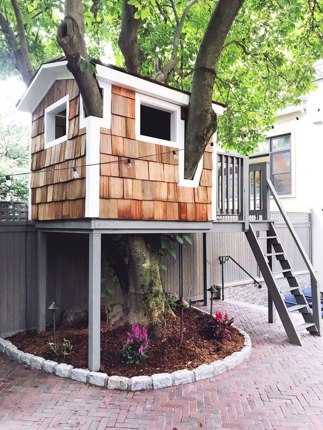 cedar shingles tree house