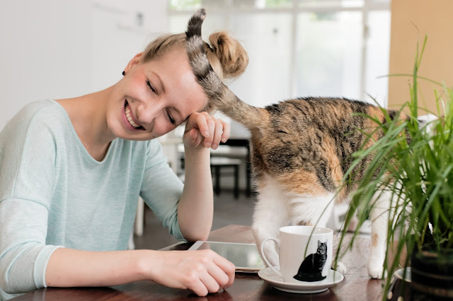 Liebe zum Tier - veganes Café
