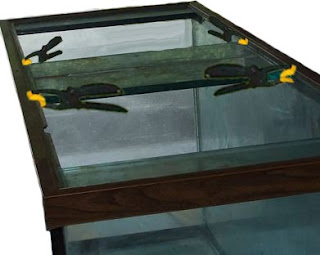 Aquarium Glass Center Divider Repair; Silicone Applications