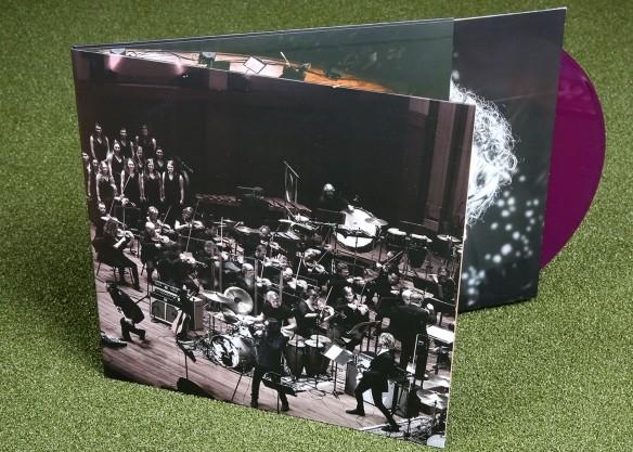 Sonic Evolution on Translucent Purple Vinyl