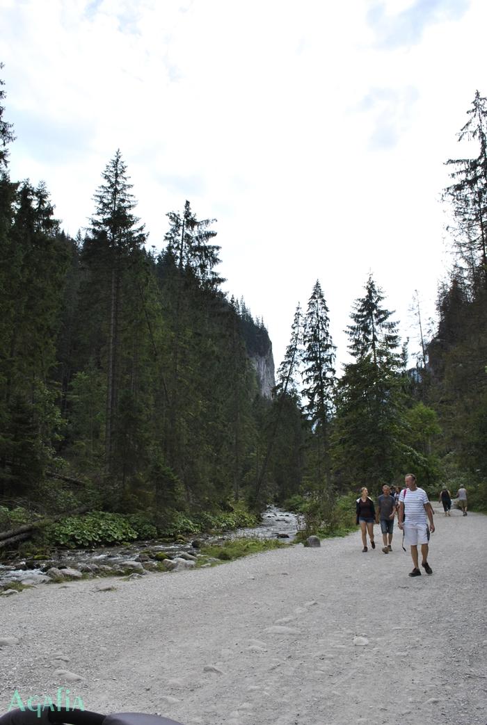 Doliny Tatrzanskie