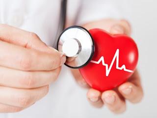 Zioła wspomagające leczenie schorzeń serca