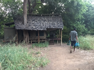 safari, teltta,botswana