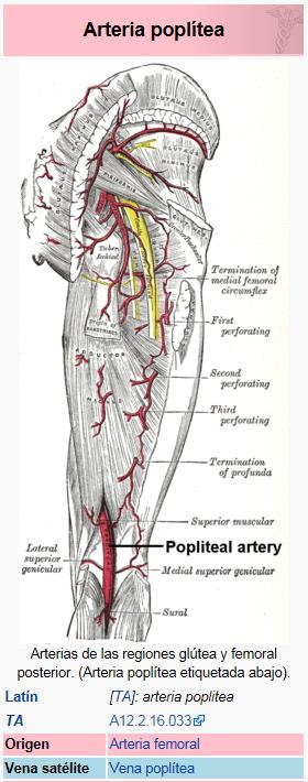 El Blog de Isa y Juan: Un raro caso urgente de patología vascular ...