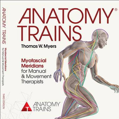 Art Of Motion Circle Of Friends Anatomy Trains Newsflash Summer