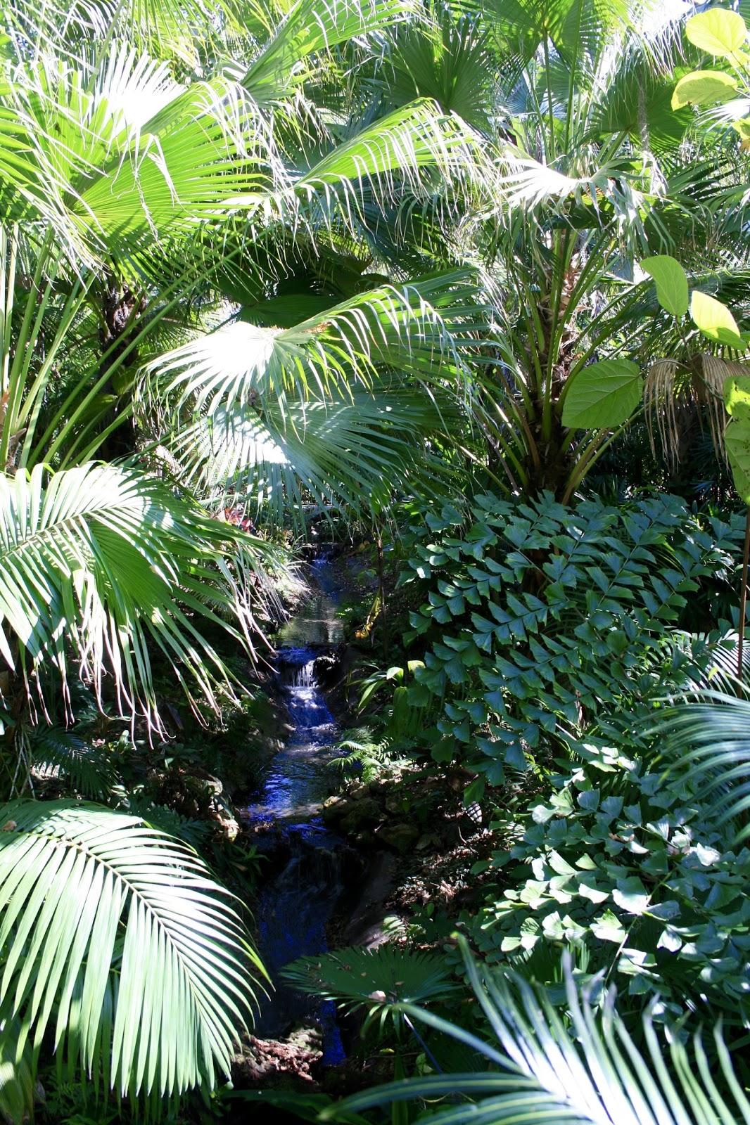 harry p leu gardens amy u0027s creative pursuits
