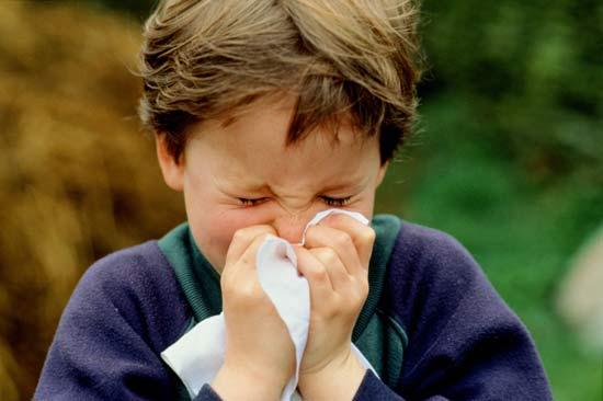 http://2.bp.blogspot.com/-YKrGwE48SNE/T_JZCZ4Df1I/AAAAAAAAD68/k4MmZDoZ_Es/s400/Sneezing-3.jpg