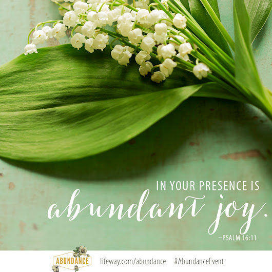 Abundance Greenville Launch Party