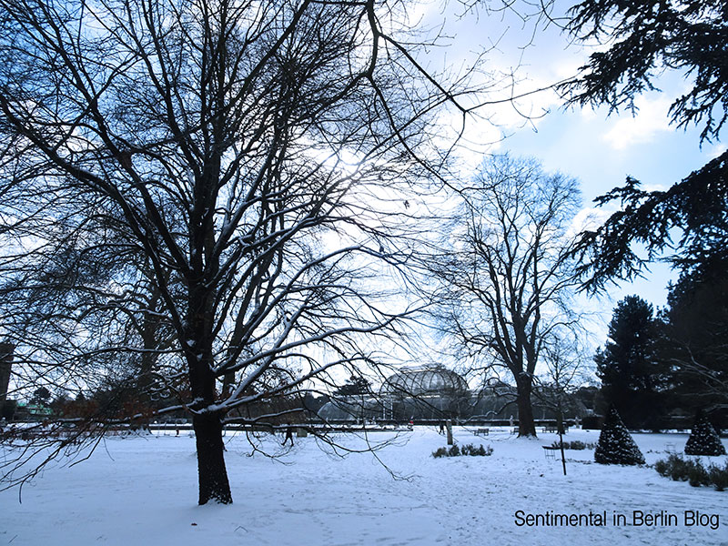 Kew_Gardens_Snowy_london_2018